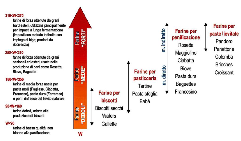 schema di riferimento forza della farina